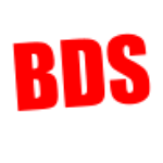 BDS Accounting Svc