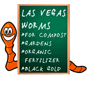 Las Vegas Worms